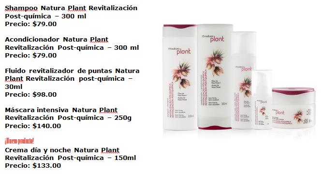 Plantrevitalizacion